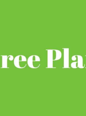 free plan